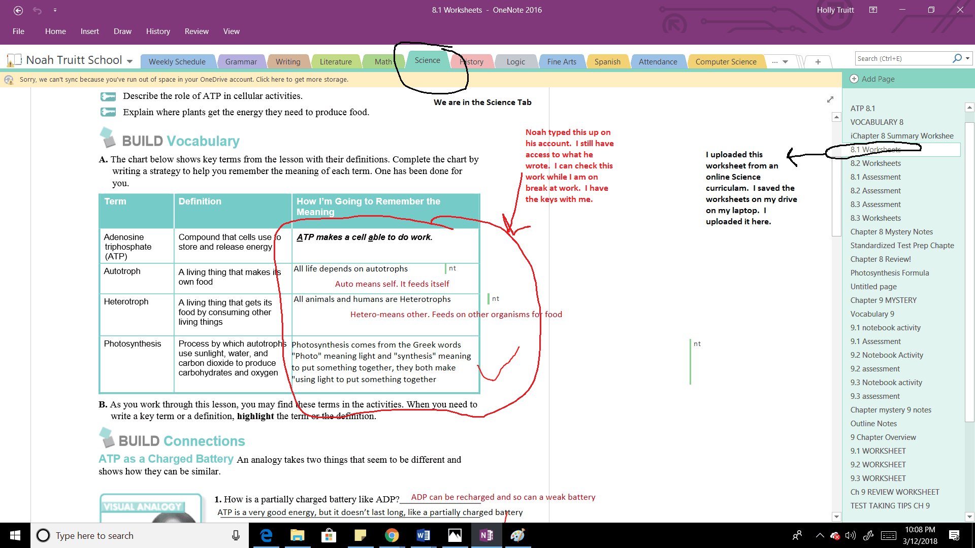 Open tab of OneNote example