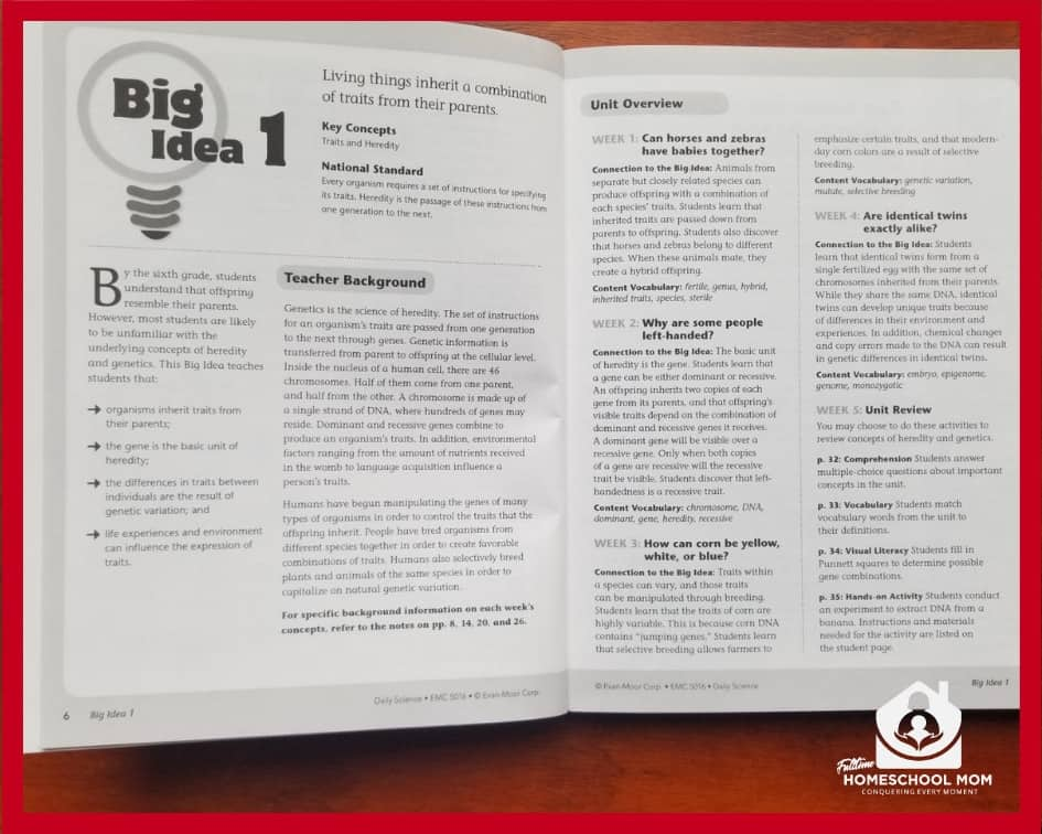 Teacher book the big idea for the unit